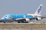 tmkさんが、関西国際空港で撮影した全日空 A380-841の航空フォト(写真)