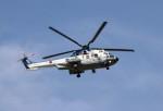 ハム太郎。さんが、横田基地で撮影した陸上自衛隊 EC225LP Super Puma Mk2+の航空フォト(写真)