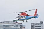 蒼い鳩さんが、東京ヘリポートで撮影した川崎市消防航空隊 AS365N3 Dauphin 2の航空フォト(写真)