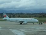 Smyth Newmanさんが、バンクーバー国際空港で撮影したエア・カナダ A320-211の航空フォト(写真)