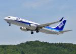 じーく。さんが、広島空港で撮影した全日空 737-881の航空フォト(飛行機 写真・画像)