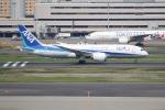 OMAさんが、羽田空港で撮影した全日空 787-8 Dreamlinerの航空フォト(飛行機 写真・画像)