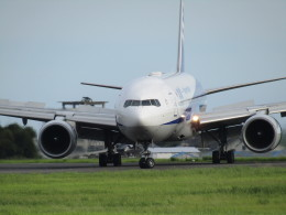 小型機専門家さんが、高知空港で撮影した全日空 777-281/ERの航空フォト(写真)