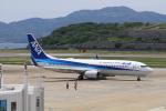 VEZEL 1500Xさんが、長崎空港で撮影した全日空 737-881の航空フォト(写真)