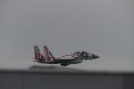 パラノイアさんが、新千歳空港で撮影した航空自衛隊 F-15DJ Eagleの航空フォト(写真)