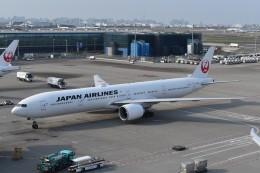 T.Kawaseさんが、羽田空港で撮影した日本航空 777-346/ERの航空フォト(飛行機 写真・画像)