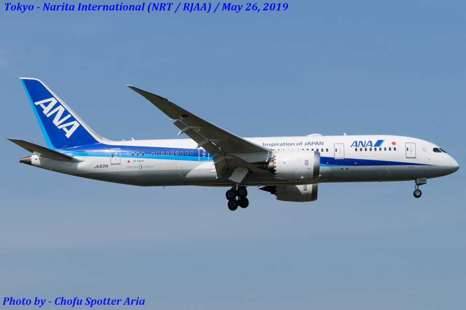 Chofu Spotter Ariaさんの全日空 Boeing 787-8 Dreamliner (JA831A) 航空フォト