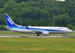 じーく。さんが、岡山空港で撮影した全日空 737-881の航空フォト(飛行機 写真・画像)