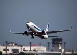 ひげおやじさんが、富山空港で撮影した全日空 737-881の航空フォト(写真)