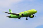 szkkjさんが、成田国際空港で撮影したS7航空 A320-214の航空フォト(写真)