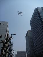 turt@かめちゃんさんが、伊丹空港で撮影した全日空 777-281の航空フォト(写真)