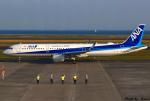 れんしさんが、山口宇部空港で撮影した全日空 A321-211の航空フォト(写真)