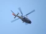 sp3混成軌道さんが、岡南飛行場で撮影したオールニッポンヘリコプター AS365N2 Dauphin 2の航空フォト(写真)