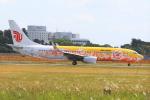 気分屋さんが、成田国際空港で撮影した中国国際航空 737-89Lの航空フォト(飛行機 写真・画像)