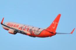 Cherry blossoms さんが、関西国際空港で撮影したチェジュ航空 737-8ALの航空フォト(飛行機 写真・画像)