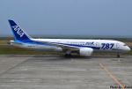 れんしさんが、山口宇部空港で撮影した全日空 787-8 Dreamlinerの航空フォト(写真)