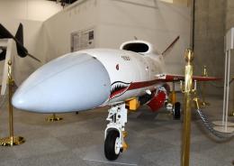 チャーリーマイクさんが、入間飛行場で撮影した航空自衛隊の航空フォト(写真)