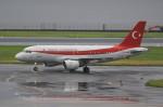 VIPERさんが、羽田空港で撮影したトルコ政府 A319-115CJの航空フォト(写真)