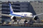 suu451さんが、羽田空港で撮影した全日空 787-8 Dreamlinerの航空フォト(写真)