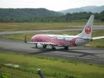 ヒコーキグモさんが、岡山空港で撮影した日本トランスオーシャン航空 737-8Q3の航空フォト(写真)