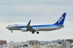 Cherry blossoms さんが、那覇空港で撮影した全日空 737-881の航空フォト(写真)