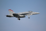 OMAさんが、岩国空港で撮影したアメリカ海兵隊 F/A-18C Hornetの航空フォト(写真)