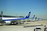 イソロクガトブさんが、羽田空港で撮影した全日空 777-281の航空フォト(写真)