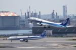 イソロクガトブさんが、羽田空港で撮影した全日空 737-881の航空フォト(写真)