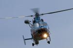 Wasawasa-isaoさんが、静浜飛行場で撮影した静岡県警察 AS365N1 Dauphin 2の航空フォト(飛行機 写真・画像)