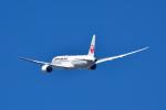 T.Sazenさんが、伊丹空港で撮影した日本航空 787-8 Dreamlinerの航空フォト(写真)
