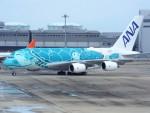 PW4090さんが、関西国際空港で撮影した全日空 A380-841の航空フォト(写真)