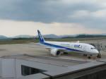 山彦望さんが、広島空港で撮影した全日空 787-8 Dreamlinerの航空フォト(写真)