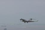 ゆなりあさんが、中部国際空港で撮影したアメリカ個人所有の航空フォト(写真)
