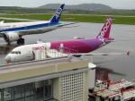 MARK0125さんが、新石垣空港で撮影したピーチ A320-214の航空フォト(写真)