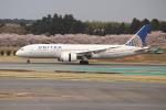OMAさんが、成田国際空港で撮影したユナイテッド航空 787-8 Dreamlinerの航空フォト(飛行機 写真・画像)