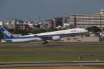 K777&787さんが、伊丹空港で撮影した全日空 777-381/ERの航空フォト(飛行機 写真・画像)