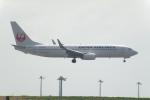 なまくら はげるさんが、羽田空港で撮影した日本航空 737-846の航空フォト(写真)