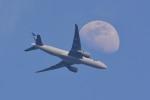 トロピカルさんが、羽田空港で撮影した全日空 777-F81の航空フォト(写真)