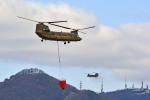 Gambardierさんが、岡南飛行場で撮影した陸上自衛隊 CH-47JAの航空フォト(写真)