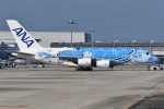 冷やし中華始めましたさんが、関西国際空港で撮影した全日空 A380-841の航空フォト(写真)
