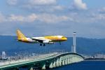 ザビエルさんが、関西国際空港で撮影したスクート A320-232の航空フォト(写真)