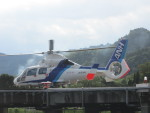 ランチパッドさんが、静岡ヘリポートで撮影したオールニッポンヘリコプター AS365N2 Dauphin 2の航空フォト(写真)