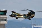 鈴鹿@風さんが、名古屋飛行場で撮影した航空自衛隊 CH-47J/LRの航空フォト(写真)
