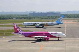 funi9280さんが、新千歳空港で撮影したピーチ A320-214の航空フォト(写真)