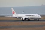 奈良ン児さんが、中部国際空港で撮影した日本航空 787-8 Dreamlinerの航空フォト(写真)