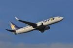 kumagorouさんが、那覇空港で撮影したスカイマーク 737-8Q8の航空フォト(写真)