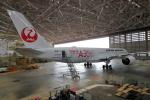 JA1118Dさんが、羽田空港で撮影した日本航空 A350-941XWBの航空フォト(写真)