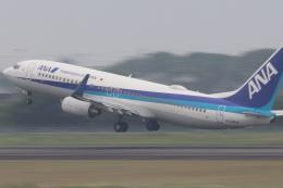 小型機専門家さんが、高知空港で撮影した全日空 737-881の航空フォト(写真)