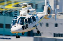 NCT310さんが、東京ヘリポートで撮影したエアバス・ヘリコプターズ・ジャパン AS365N2 Dauphin 2の航空フォト(飛行機 写真・画像)