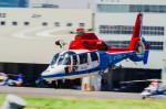 NCT310さんが、東京ヘリポートで撮影した川崎市消防航空隊 AS365N3 Dauphin 2の航空フォト(写真)